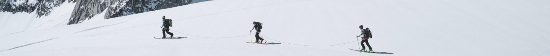 Ski-/Tourenstöcke